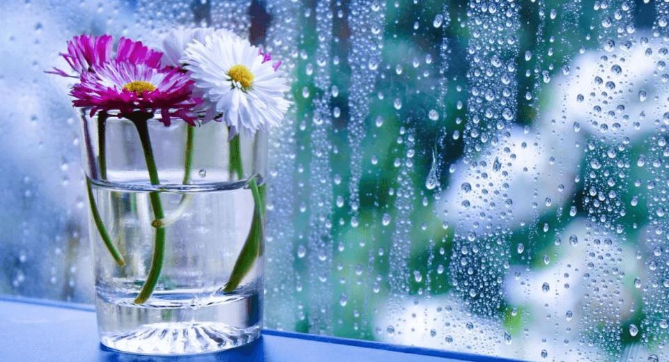 Cum scapi de condens pe geam si umiditatea din casa